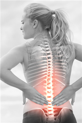 The Five Activities Deserving Chiropractic Check-Ups